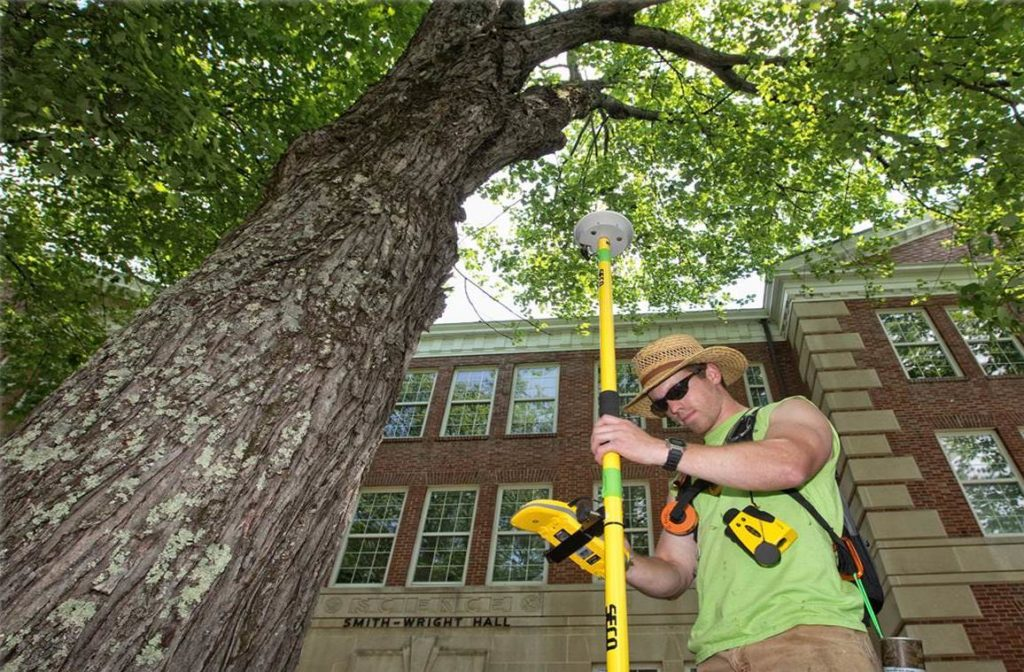 Arborist Consultations-Plantation FL Tree Trimming and Stump Grinding Services-We Offer Tree Trimming Services, Tree Removal, Tree Pruning, Tree Cutting, Residential and Commercial Tree Trimming Services, Storm Damage, Emergency Tree Removal, Land Clearing, Tree Companies, Tree Care Service, Stump Grinding, and we're the Best Tree Trimming Company Near You Guaranteed!