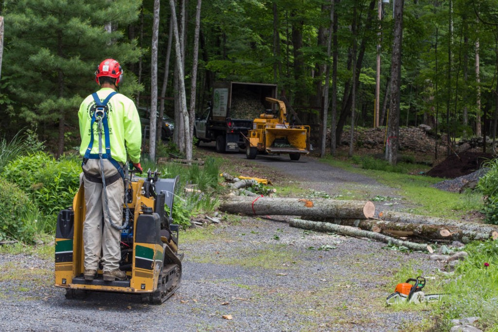 Emergency Tree Removal-Plantation FL Tree Trimming and Stump Grinding Services-We Offer Tree Trimming Services, Tree Removal, Tree Pruning, Tree Cutting, Residential and Commercial Tree Trimming Services, Storm Damage, Emergency Tree Removal, Land Clearing, Tree Companies, Tree Care Service, Stump Grinding, and we're the Best Tree Trimming Company Near You Guaranteed!