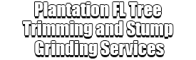 Plantation FL Tree Trimming and Stump Grinding Services Logo-We Offer Tree Trimming Services, Tree Removal, Tree Pruning, Tree Cutting, Residential and Commercial Tree Trimming Services, Storm Damage, Emergency Tree Removal, Land Clearing, Tree Companies, Tree Care Service, Stump Grinding, and we're the Best Tree Trimming Company Near You Guaranteed!