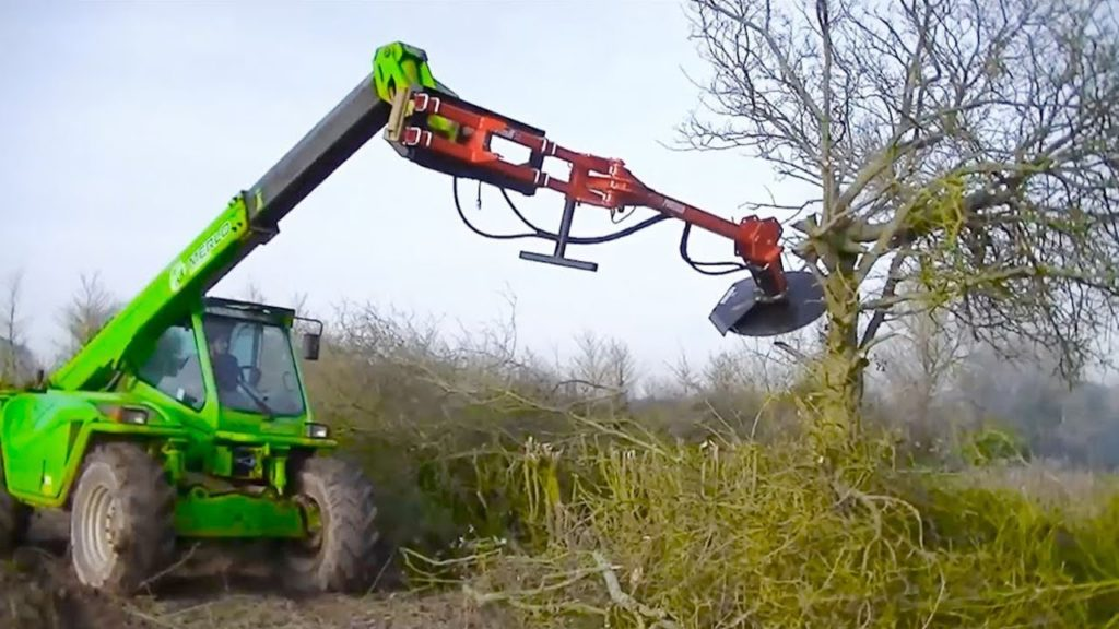 Tree Trimming Services-Plantation FL Tree Trimming and Stump Grinding Services-We Offer Tree Trimming Services, Tree Removal, Tree Pruning, Tree Cutting, Residential and Commercial Tree Trimming Services, Storm Damage, Emergency Tree Removal, Land Clearing, Tree Companies, Tree Care Service, Stump Grinding, and we're the Best Tree Trimming Company Near You Guaranteed!